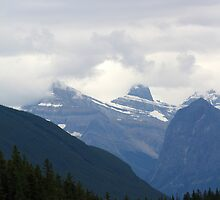 Peaks and Valleys by Alyce Taylor