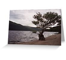 Keeping watch at Loch Lomond Greeting Card