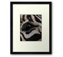 Eye'll Be Seeing You Framed Print