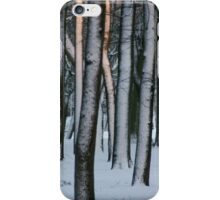 Sunny winter park iPhone Case/Skin
