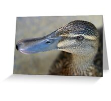 Will Quack For Food Greeting Card