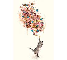 catching butterflies Photographic Print