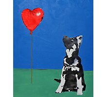 Freddie and the Balloon Photographic Print