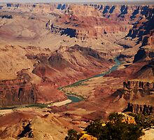 Colorado River from South Rim by Olga Zvereva