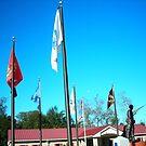 Military Veterans Memorial  by abigirl