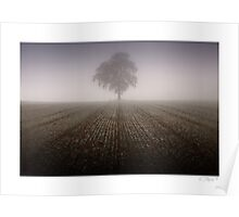 Lost in the fog - Boughton Westwood, nr Much Wenlock Poster