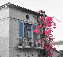 Malaga Cove Plaza Balcony by Walt Conklin