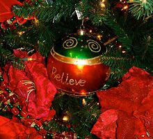 Believe in the Miracle of Christmas... by Carol Clifford