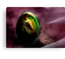 Hatching the Soul Canvas Print