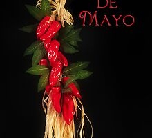 Cinco de Mayo by Trudy Wilkerson