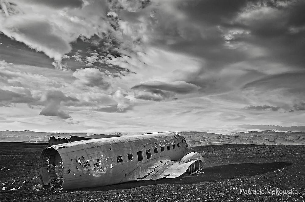 Iceland - Dakota by Patrycja Makowska