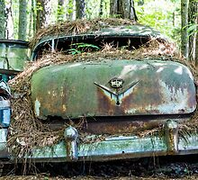 Old Caddy from Rear by dbvirago