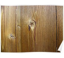 Wood knot on the wall Poster
