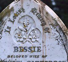 Good Old Bessie by Helen Greenwood