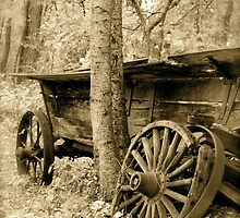 broken down wagon by Jennifer Muller