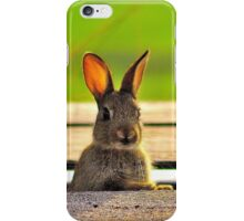'Rabbit' iPhone Case/Skin