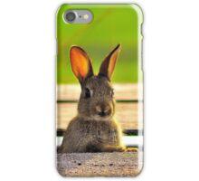 'Rabbit' iPhone Case/Skin