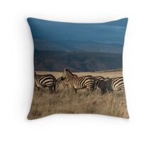 Zebras at Sunrise Throw Pillow