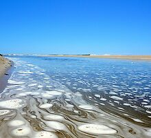 WHERE SALTWATER MEETS THE FRESHWATER by Ekascam