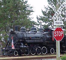 Girabaldi train by Soulmaytz