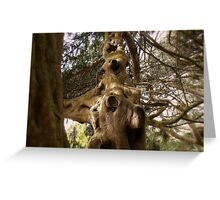 The Tree. Greeting Card