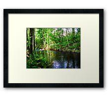 Quiet Sream Framed Print