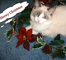 A Meowy Christmas to You! by Carol Clifford