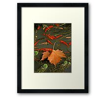 Above and Below the Surface Framed Print