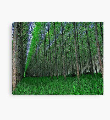 'Trees' Canvas Print