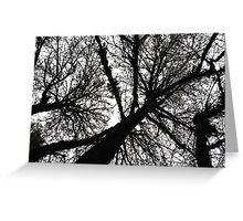 treetops 2 Greeting Card