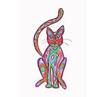 coloured cat Photographic Print