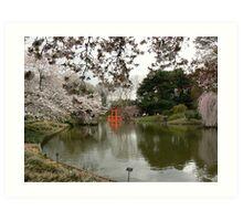 Japanese Garden in Cherry Blossom Season #2 Art Print