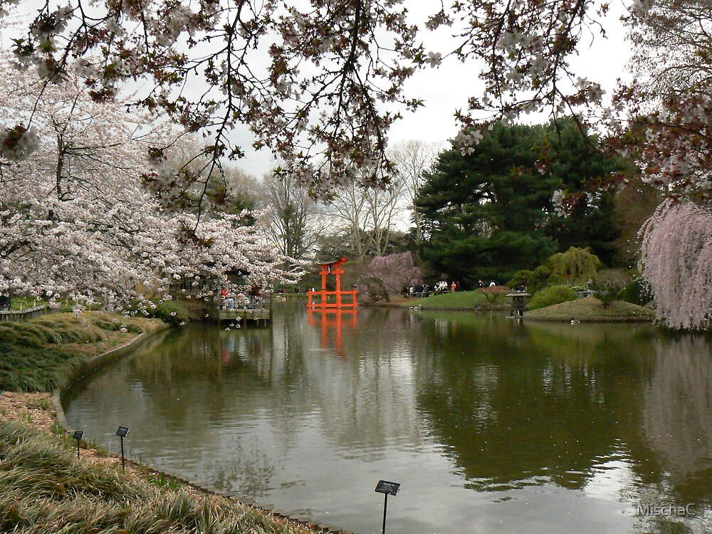 Japanese Garden in Cherry Blossom Season #2 by MischaC