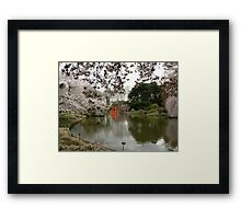 Japanese Garden in Cherry Blossom Season #2 Framed Print