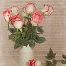 Paper Roses by Maria Dryfhout