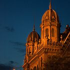 Budapest at night by sanyi