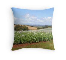 Field of poppies, Tasmania, Australia Throw Pillow