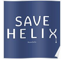 Save Helix Poster