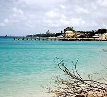 antigua  by Meaghan Tucker