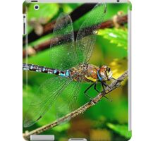 Dragonfly & Colours iPad Case/Skin