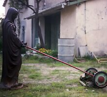 Our lady of the lawn mower by Pascal Inard