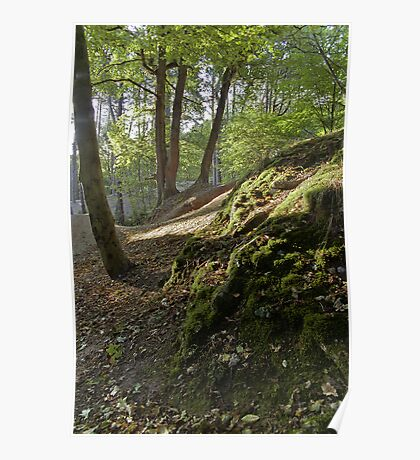 Mousehold Heath Poster