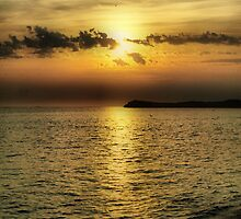 Sunset Over Penguin Island by Jon Staniland