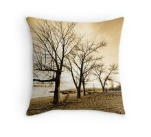 Mothers of the Disappeared Throw Pillow