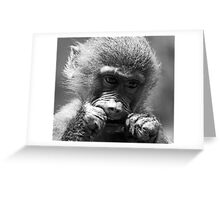 Chewing Greeting Card