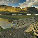 Iceland - Vik i Myrdal by Patrycja Makowska