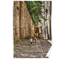 Spello alley Poster