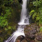Jock Atkins Waterfall by Ken Wright