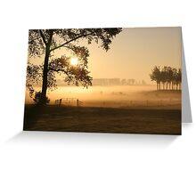 Dutch foggy sunrise in rural landscape Greeting Card