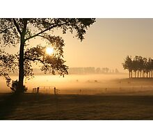 Dutch foggy sunrise in rural landscape Photographic Print